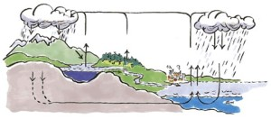 tegning vannets kretsløp