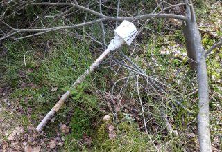 Bevar naturen med sporløs ferdsel