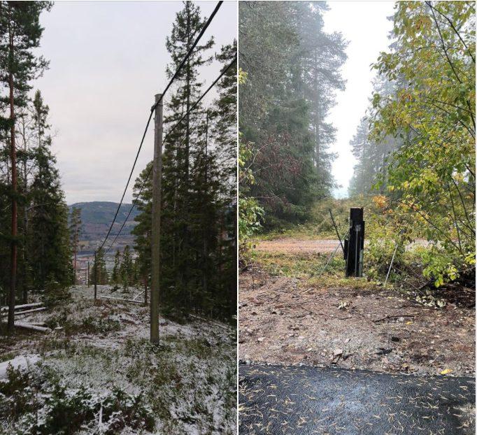 Bilde: en kraftledning går gjennom skogen på et bilde. På neste bilde er ledningen borte og stolpen kuttet ned.